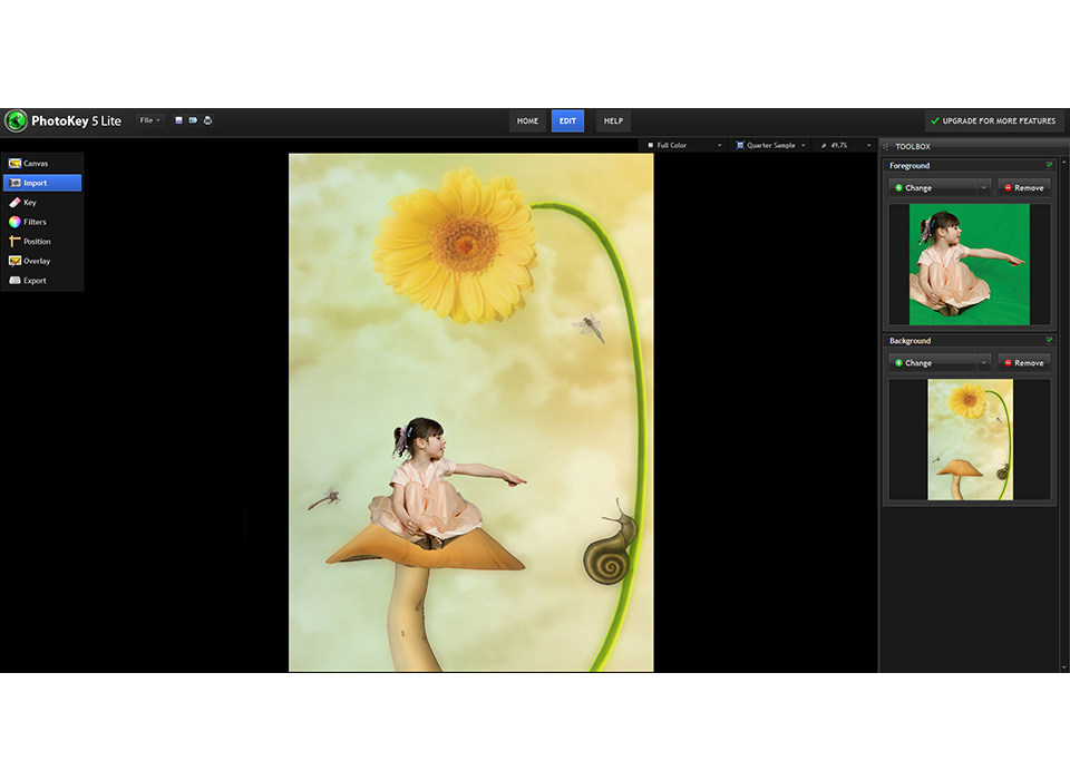 PhotoKey Lite software replacing green screen with a digital background