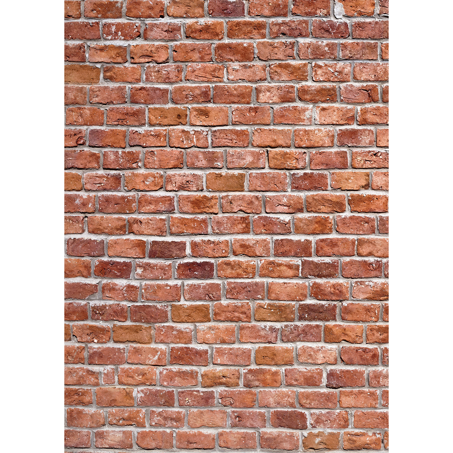 Classic Brick Wall Matte Vinyl Backdrop (5' x 7') - Multi-Color