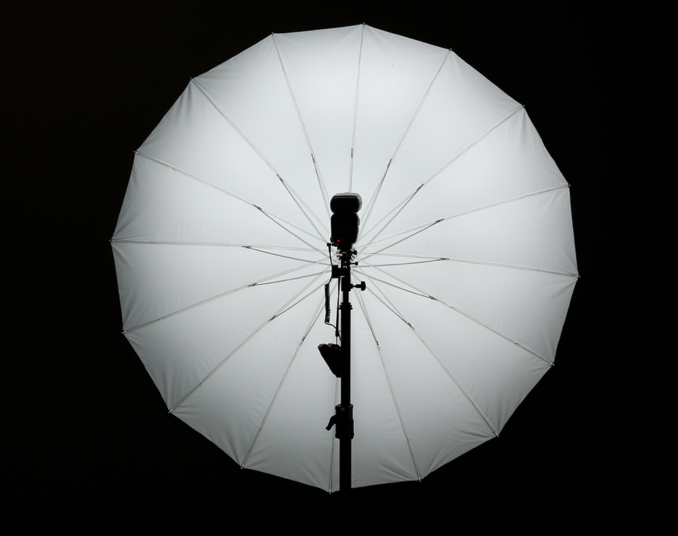 Perfect Catchlights with Apollo Deep Umbrella with Reflective White Interior