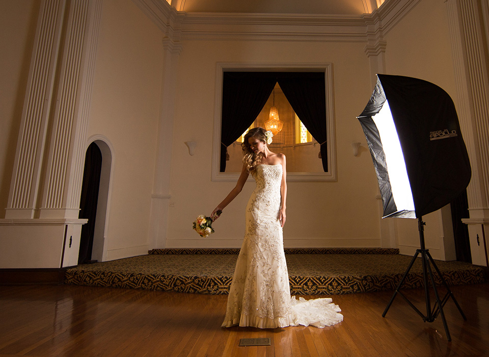 Mega JS Apollo softbox lighting bridal portrait