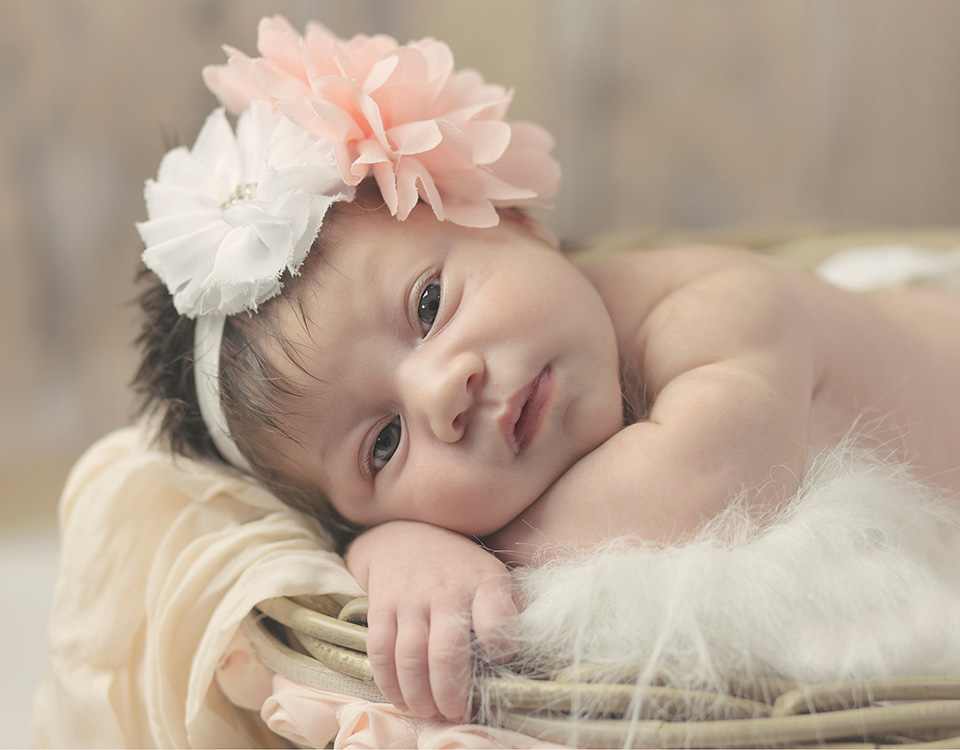 Newborn portrait using Lollipop Little Studio System
